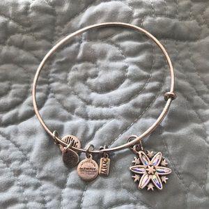 Alex and Ani 2017 holiday bracelet